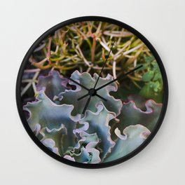 Succulents on Fire Wall Clock