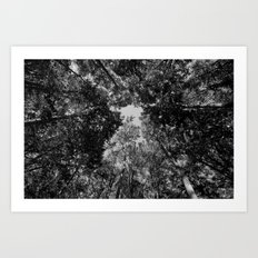 up to the abyss Art Print