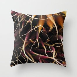 Carrot Colors Throw Pillow