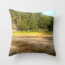 Photo USA Indiana State Park Nature Parks forest Grass park Forests Throw Pillow