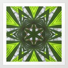 Garden Star Art Print