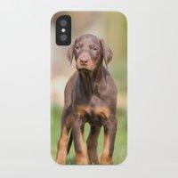 doberman iPhone & iPod Cases featuring doberman pinscher by Jana Behr