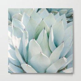Blue Agave Plant Metal Print