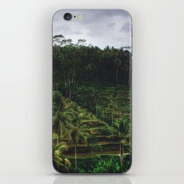 The Rice Terraces of Bali iPhone Skin