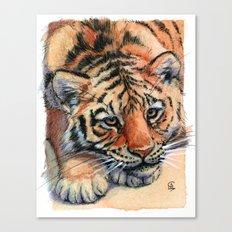 Resting Tiger Cub 896 Canvas Print