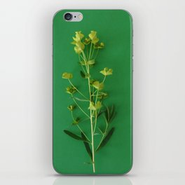 Green summer | Flower Photography iPhone Skin