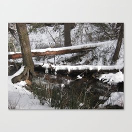 Winter's Light Canvas Print