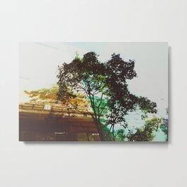 Bicolor. Metal Print