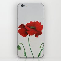 poppy iPhone & iPod Skins featuring Poppy by Diane Nicholson