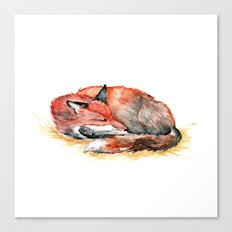 Sleeping Fox Watercolor Canvas Print