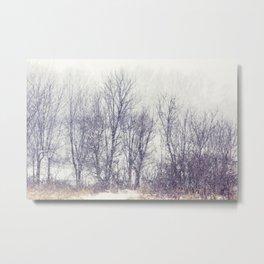 winter textures Metal Print