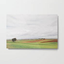 Countryside Landscape Metal Print