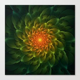 Beautiful Orange-Green Desert BarrelCactus Spiral Canvas Print