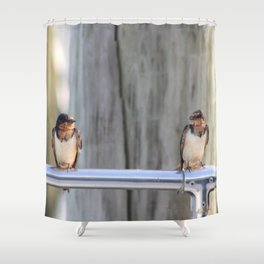 Bayou Barn Swallows (1) Shower Curtain