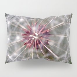 Dandelion Seed Head Pillow Sham
