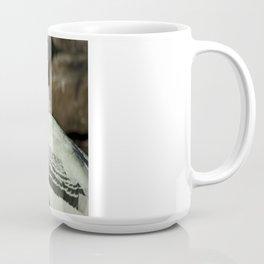 Painted Stork, San Antonio Zoo Coffee Mug