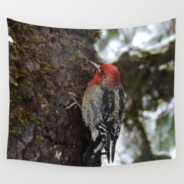 Red-Breasted Sapsucker in Christmas Snow Wall Tapestry