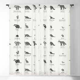 Infographic Guide to Forest Animals Blackout Curtain