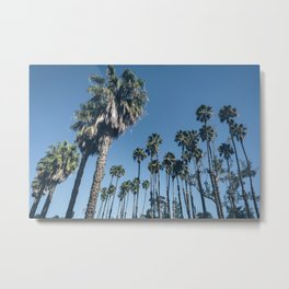 Another Perfect Day Metal Print