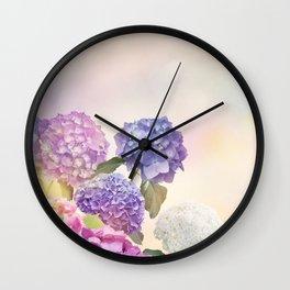hydrangea flowers bloom in the garden Wall Clock