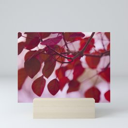 Red Leaves Mini Art Print