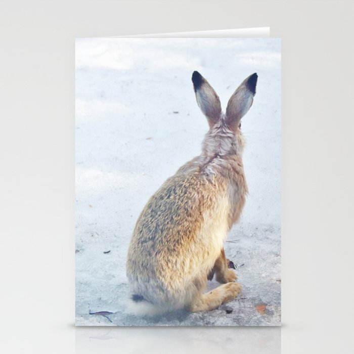 Rabbit in winter Stationery Cards