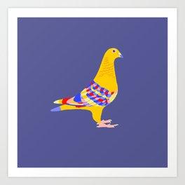 Colombian pigeon Art Print