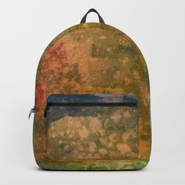 Abstract No. 227 Backpack