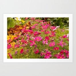 Royal Gardens Art Print