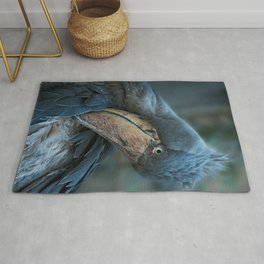 Shoebill Cleaning It's Feathers Rug