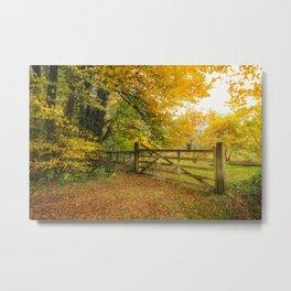 Glengarriff Woods in autumn Metal Print
