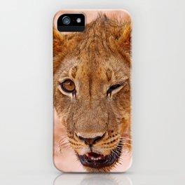 Winking lion - Africa wildlife iPhone Case