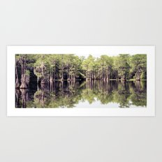 Florida Beauty 10 Art Print