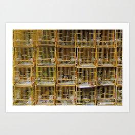 Cagey Art Print