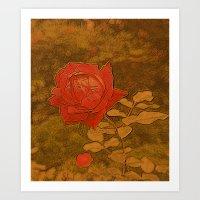 A Rose Series II Art Print