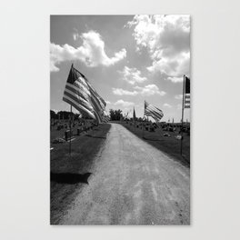 star spangled banner III Canvas Print
