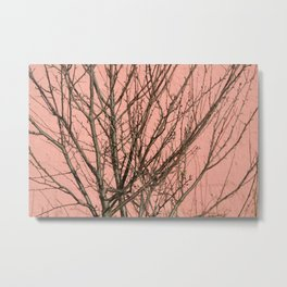 Bare tree against a pink wall Metal Print