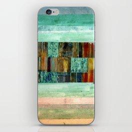 Strip Search iPhone Skin