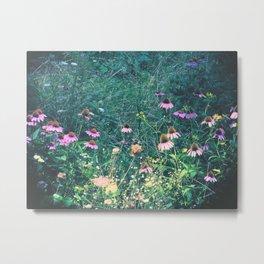 Flowers of the Field Metal Print