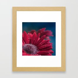 Gerbera Red Jewel Framed Art Print