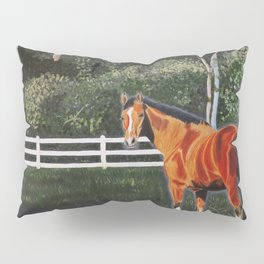 In a Field Pillow Sham