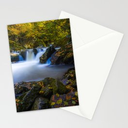 virginia creeper creek junction during autumn Stationery Cards