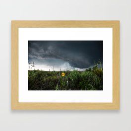 Stormflower - Sunflower and Storm in Texas Framed Art Print