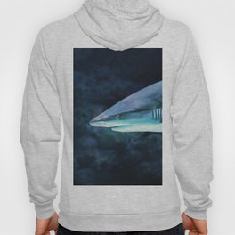 Gray Shark Head (Color) Hoody
