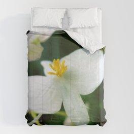Yellow Fingers Comforters