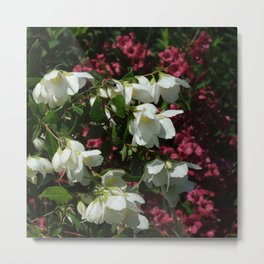 cascade of summer Metal Print