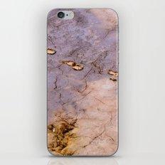 Urban Jungle 53 iPhone & iPod Skin