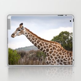 Beautiful close-up of Giraffe in South Africa Laptop & iPad Skin