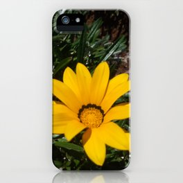 Yellow Flowers, Ripe Season, Welcome Spring! iPhone Case