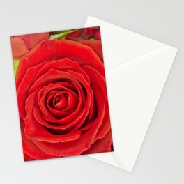 Red Rose for Love Stationery Cards